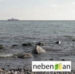 nebenan - Fresh X Clip - Download